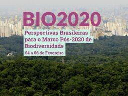 BIO2020: Perspectivas brasileñas para el marco de biodiversidad posterior a 2020