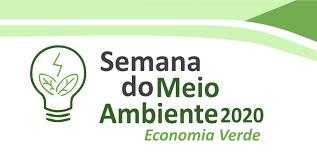 Desenvolvimento de uma economia verde pós-pandemia: Direções e Tendências