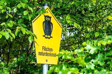 Gestão ambiental na Alemanha é tema de encontro do Fórum CB27