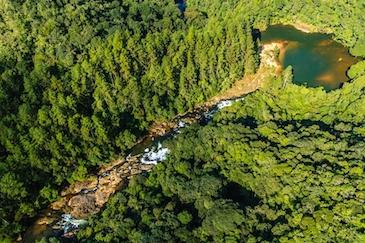 ICLEI América do Sul lança Programa de Aceleração de Unidades de Conservação