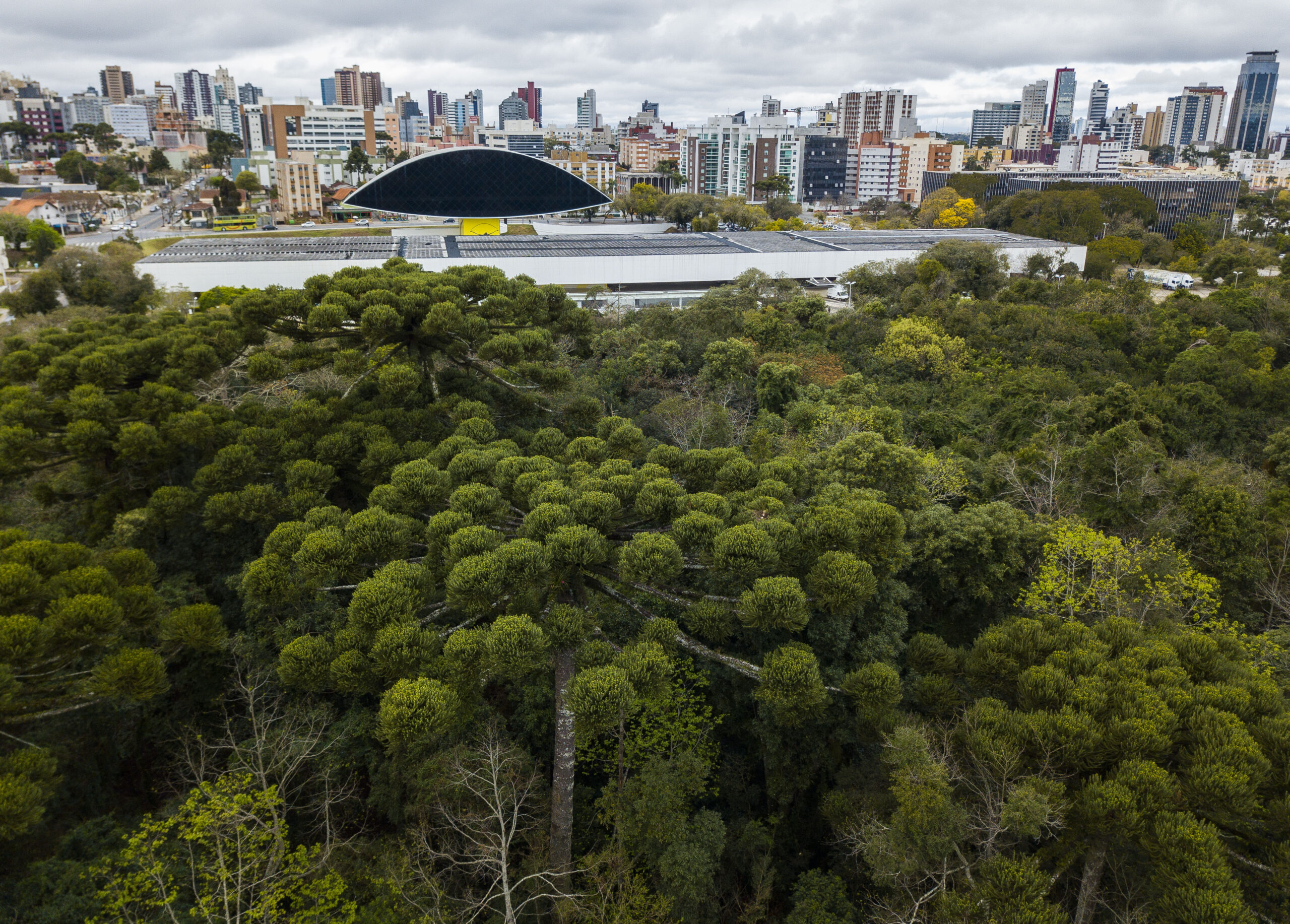 Cidades sul-americanas marcam presença no Daring Cities