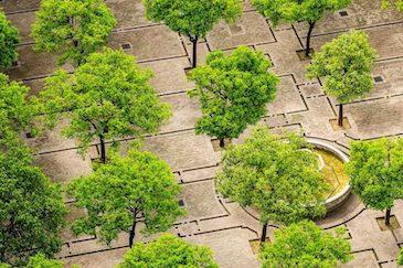 ICLEI Innovation: tecnología y innovación para la sostenibilidad urbana