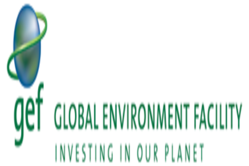 GEF lança Novo Programa Global para Desenvolver e Gerir Cidades de maneira Sustentável