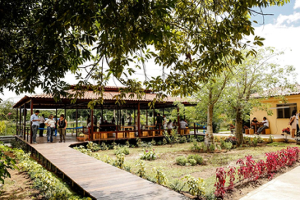 Jardim Botânico do Recife amplia área verde e ganha novas estruturas