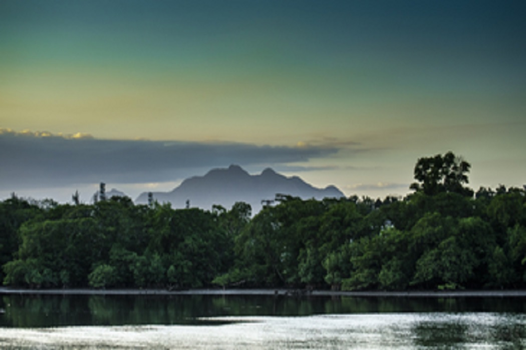 Encontro em Florianópolis debate boas práticas de municípios na conservação da natureza