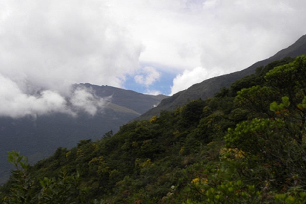 Gestão efetiva de áreas protegidas por governos locais é tema de encontro internacional em Lima