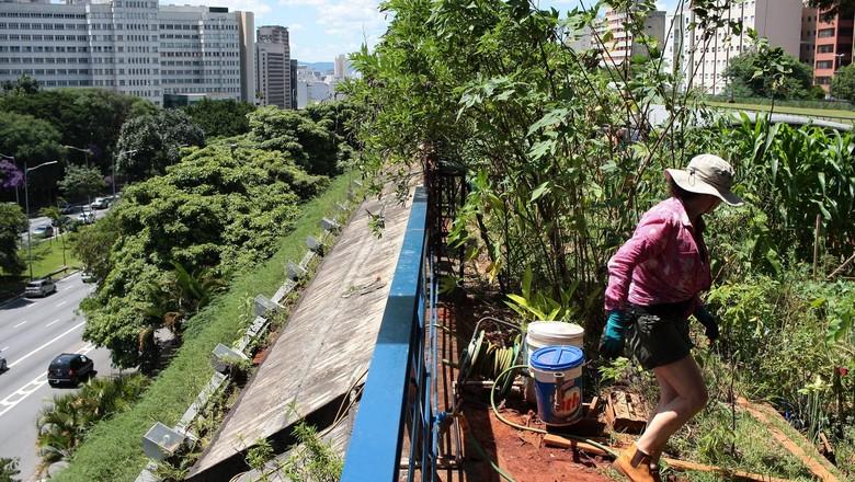 Belo Horizonte capacita gestores sobre políticas públicas de agroecologia e agricultura urbana