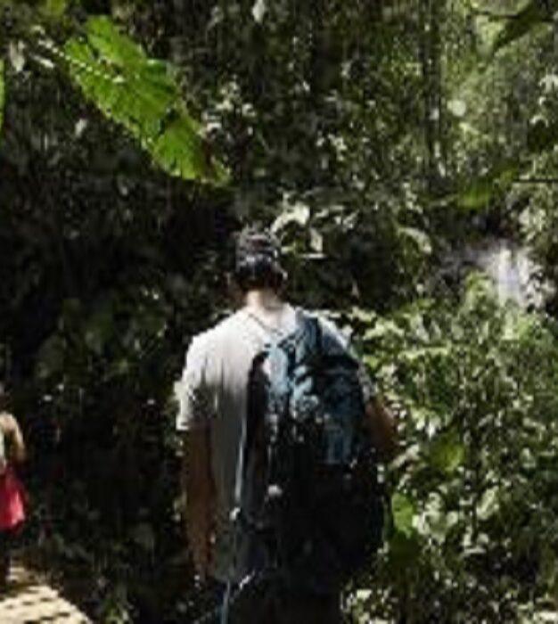Representantes da Colômbia, Equador e Peru avaliam a contribuição dos municípios para a Meta de Aichi 11