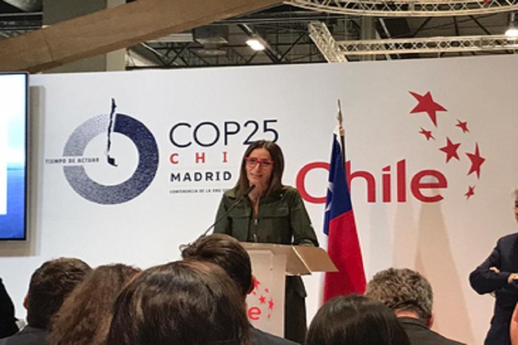 «De Chile al Reino Unido – El camino para Glasgow: consolidación y otras contribuciones para implementación de las NDCs» fue uno de los paneles de la COP25 el martes