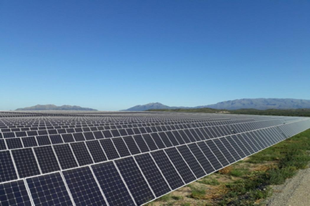 Google e ICLEI cooperam em fundo piloto para ações climáticas locais orientadas por dados