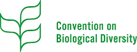 """Metropolis & Biodiversidade : """"Unlocking the power of metropolises to mainstream biodiversity and ecosystem services for nature and people"""""""