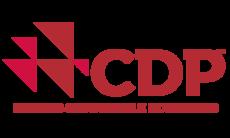 Conexión CDP 2019