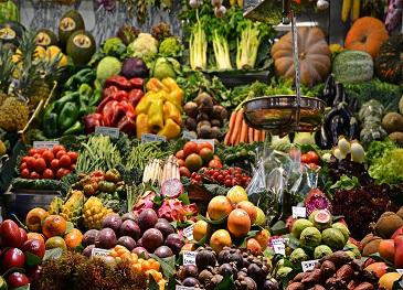 Belo Horizonte e Rosário representam a América do Sul no Comitê Diretivo do Pacto de Milão para Política de Alimentos
