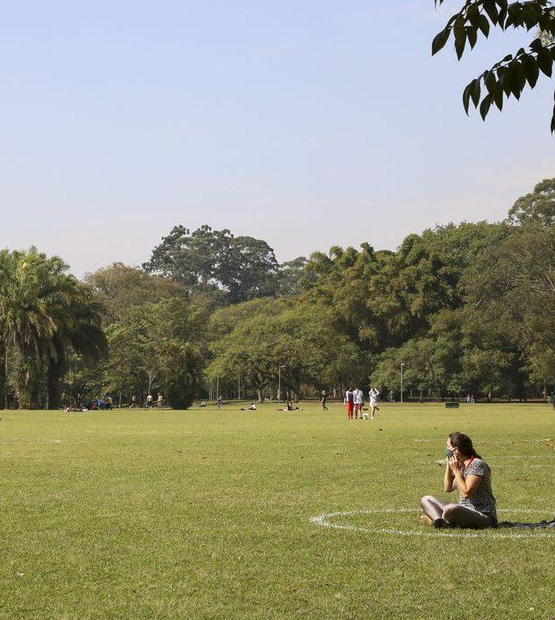 Organizações se unem para estimular uso de Soluções baseadas na Natureza no Brasil