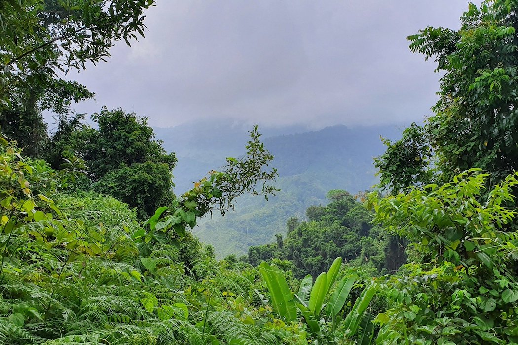 Un nuevo diálogo entre actores de gobiernos colombianos para fortalecer la conservación ambiental en el país