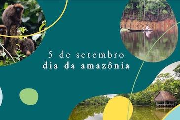 Dia da Amazônia: desenvolvimento sustentável com a floresta em pé